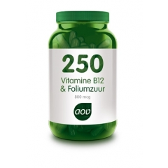Vitamine B12 & Foliumzuur - 60 caps